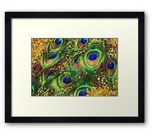 Fantasy Peacock Feathers laden with gold Framed Print