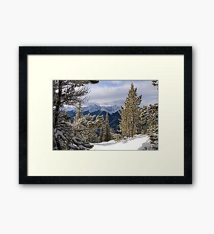 Winter Paradise Framed Print
