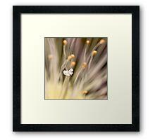 Inner life  of a flower Framed Print