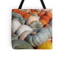 Multi-colored Pumpkins Tote Bag