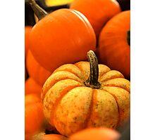 Odd Man Out, Autumn Pumpkins Photographic Print