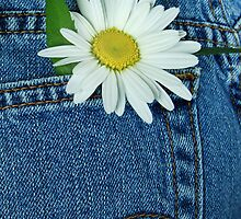 Denim Daisy (iPhone case) by Maria Dryfhout
