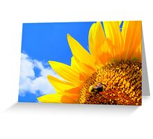 BEEhind and a Sunflower Greeting Card