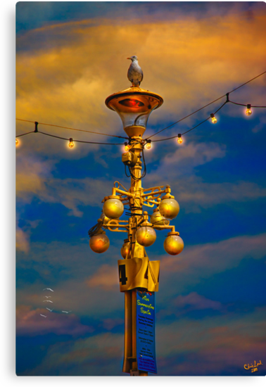 Evening On The Seafront In Eastbourne by Chris Lord