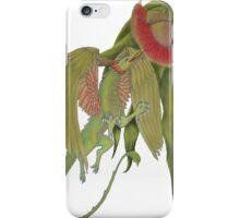 gumnut dragon case iPhone Case/Skin