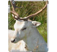 Deer at Dunham. iPad Case/Skin