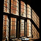 Blickling Window, Norfolk Iphone by Simon Duckworth