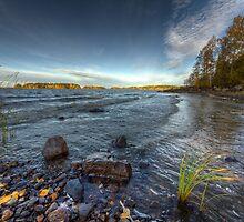 Autumn Scape II by Petri Rautiainen