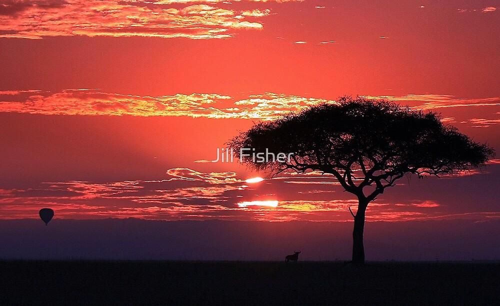 African Dawn by Jill Fisher