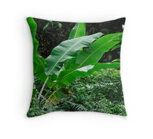Banana tree leaves in tropical garden, close-up, Big Island, Hawaii Islands, United States Throw Pillow