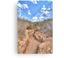 Blue sky over a dune Canvas Print