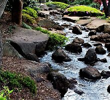 Japanese Gardens Toowoomba Queensland Australia by sandysartstudio