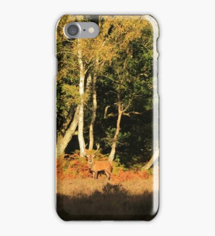 New Forest Stag iPhone Case/Skin