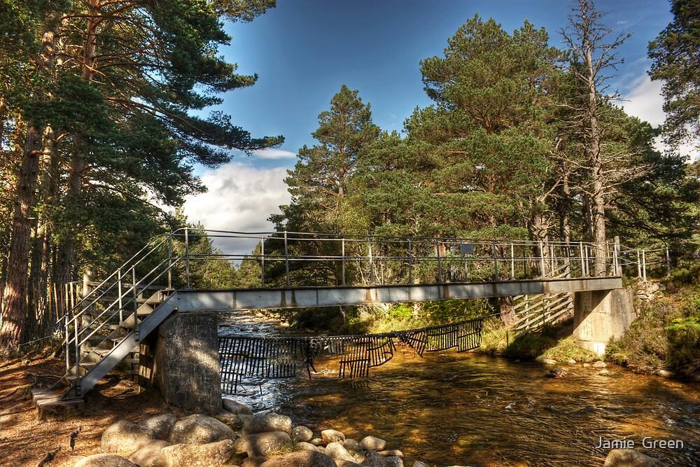 The Cairngorm Club Footbridge by Jamie  Green
