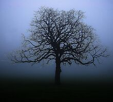 Alone in The Fog by Edward Arrowsmith