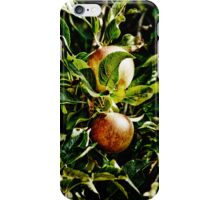 IPhone Cover - apples iPhone Case/Skin