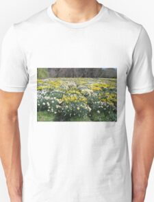 More and More Daffodils T-Shirt