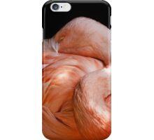 flamingo iPhone cover iPhone Case/Skin