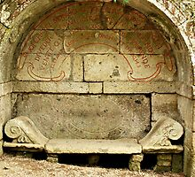 Etruscan Bench-Parco dei Mostri, Italy by Deborah Downes