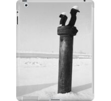 Bollard in snow iPad Case/Skin