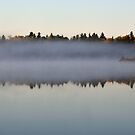 REFLECTIONS IN THE FOG by pshootermike