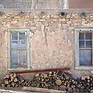 Windows and Doors by Glennis  Siverson