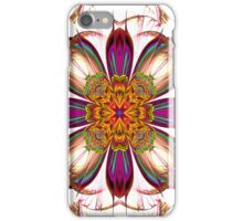Rainbow Delights iPhone Case/Skin