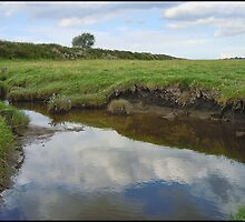 River Ribble Tributary by Peter Ackers