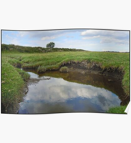 River Ribble Tributary Poster