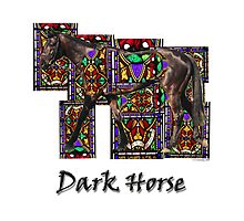 Walking Horse 2 Dark Horse Photographic Print