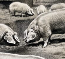 Friedrich Wilhelm Kuhnert Eight pigs on a meadow near a wallow with a thatched barn in Wellcome V0021172 Sticker