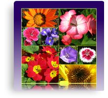 Sunkissed Flowers Collage Canvas Print