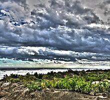 Dunescape No.2 by Scott Evers