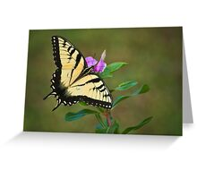 SWALLOWTAIL ON VINCA Greeting Card