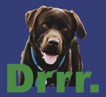 Samson Says by thegreendogs