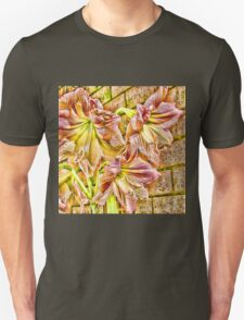 Vibrant abstract amaryllis in a garden T-Shirt