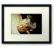 Nuts...: On feature work Framed Print