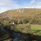 Spring in Monsal Dale by cofiant