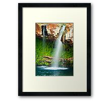 Fern Pool, Karijini National Park Framed Print