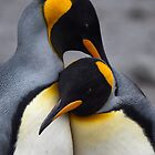 I Wuv You (King Penguins) by Krys Bailey