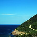 Cabot Trail 1 by Peggy Berger