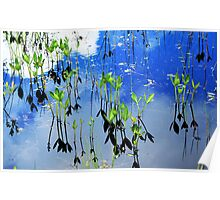 Lilies in a Bog Poster