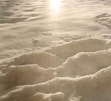 Metafore_Snow is Light by Massimo Serzio