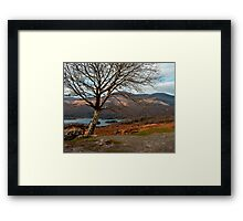 kerry hills Framed Print