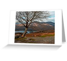 kerry hills Greeting Card