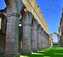 Yorkshire: Pillars, Arches & Birds at Fountains Abbey by Rob Parsons