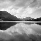 Reflections in Buttermere by Carl Greenwood