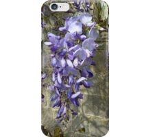 Wysteria - iPhone case iPhone Case/Skin