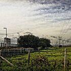 Normans bay  by Paul Morris