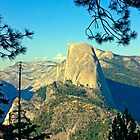 Half Dome Profile - Yosemite by Tamara Valjean